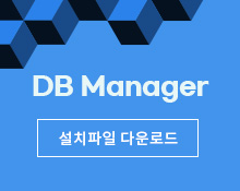 DB Manager
